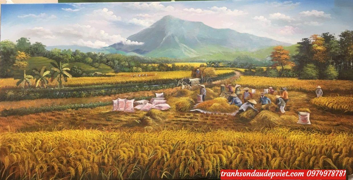 Tranh sơn dầu đồng quê mua màng bội thu cảnh gặt lúa SBO2