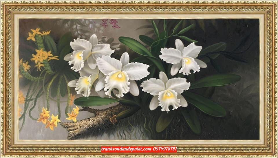 Tranh sơn dầu hoa lan trắng SB097